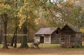 The William Harris Homestead (7)