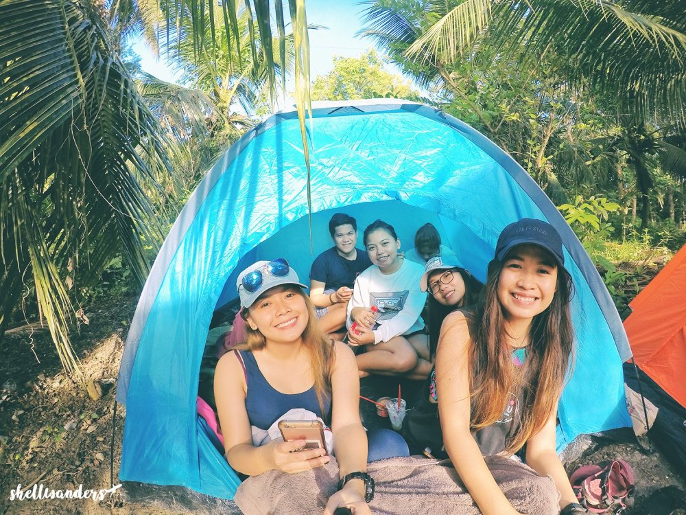 TENT WITH FRIENDS , BACALLA WOODS CAMPSITE