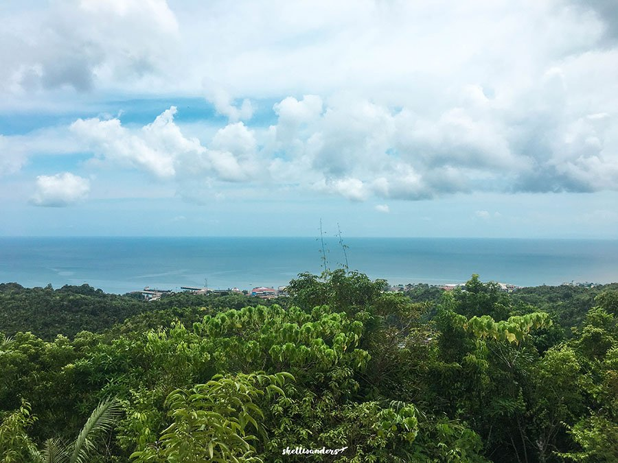 View at the top of Our Lady of Assumption Diocesan Shrine - Monte Cueva, Maasin City