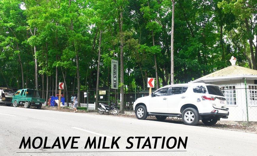 MOLAVE MILK STATION IN BARILI,CEBU