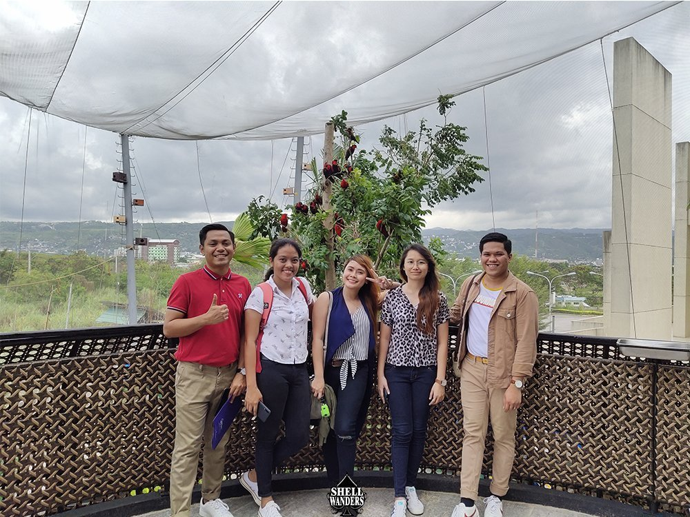 Bird Feeding Lories Cebu Ocean Park 2