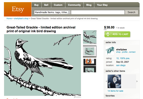 Great Tailed Grackle art print by Shelly Bowen
