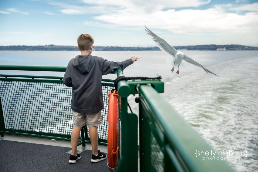 Shelly Niehaus Photography| Dallas Family Photography| Boy on ferry