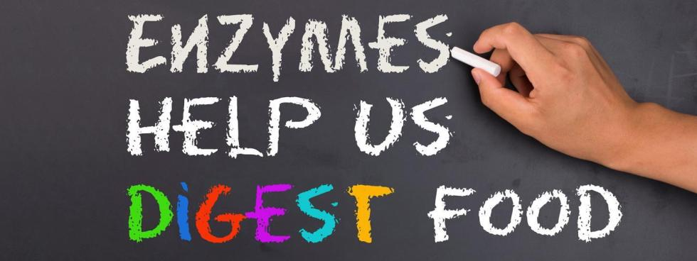 meal-replacement-shakes-digestive-enzymes