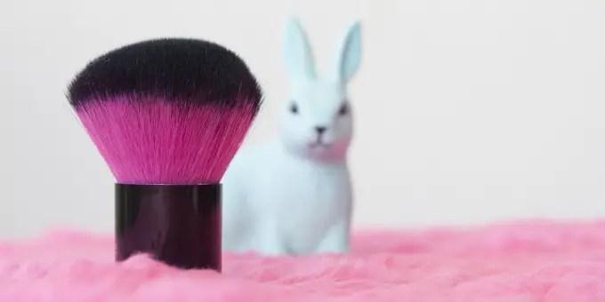 Best Cruelty-Free Foundation, Concealer, Eye Cream