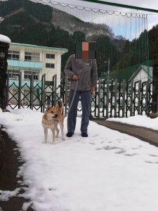岡山 保護犬 あお 西粟倉村