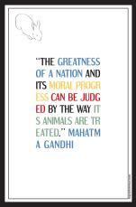 GandhiWeb-01