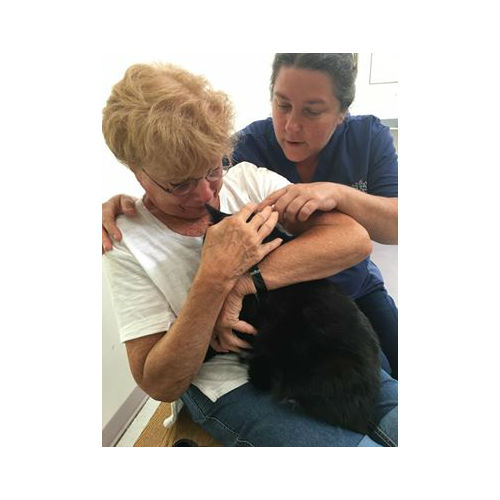 This Woman Just Found Out Shelter Volunteers Will Keep Her Cat Safe, While She Undergoes Surgery