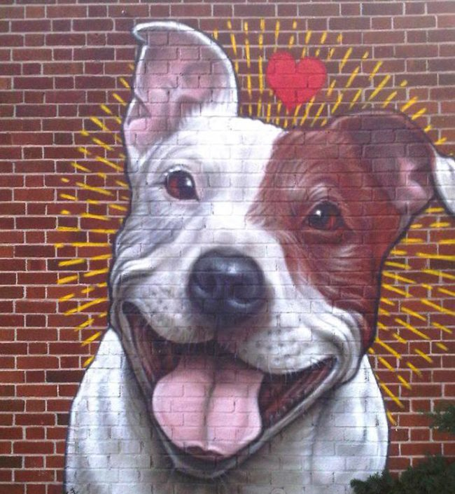 This Beautiful Mural Has An Important Message: Montreal Should NOT Ban Pit Bulls