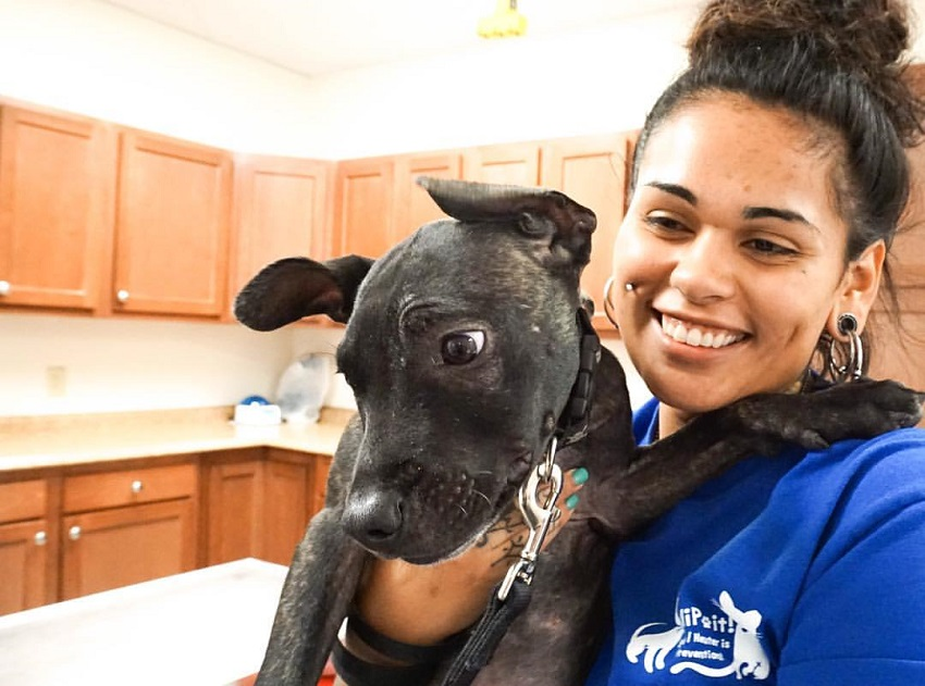 SNiP-it! New low-cost spay and neuter clinic opens in Central Florida