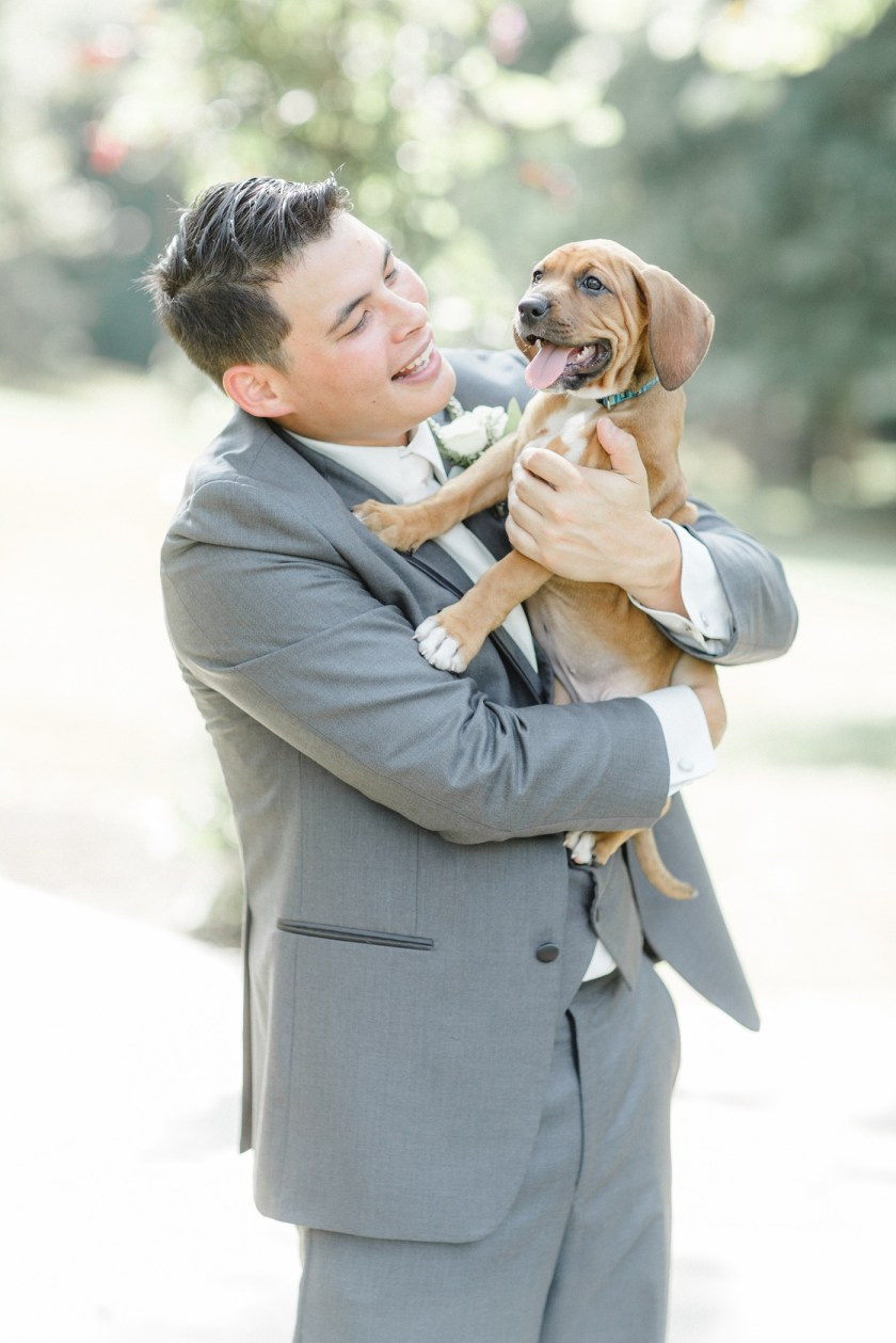 Couple Incorporates Rescue Puppies Into Their Wedding – ShelterMe.tv