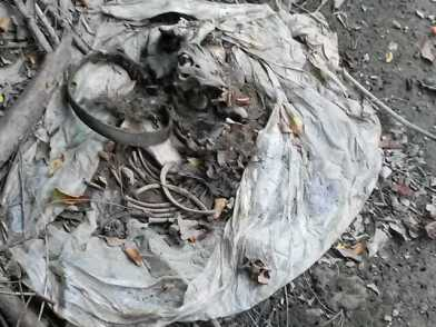 garbage-bag-with-remains-including-collar