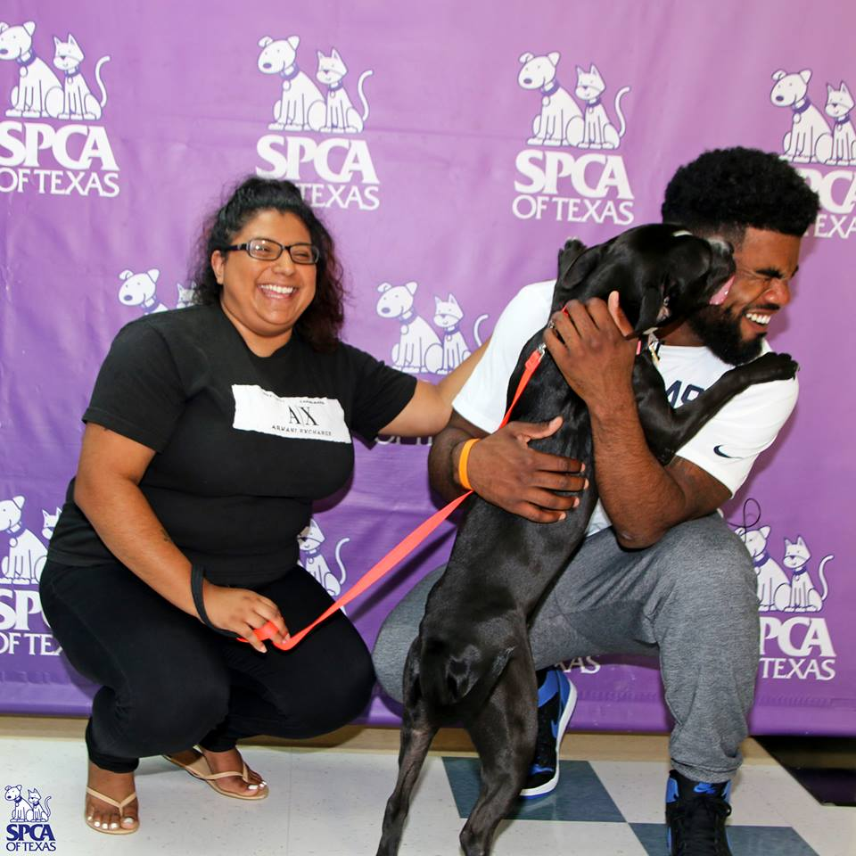 Running Back surprises adopters