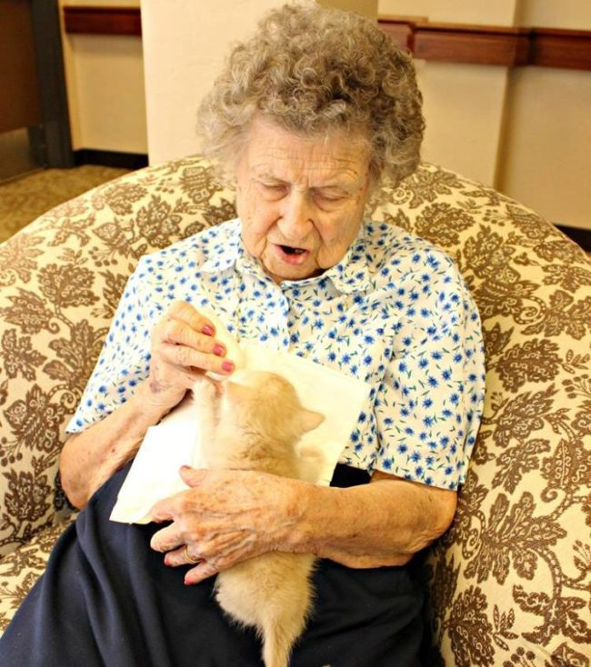 Thelma Bradfield, age 97, feeds Peaches. Photo credit: Pima Animal Care Center