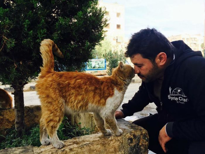 Famous Cat Sanctuary In War-Torn Syria Has Been Bombed, But Local Man Stays To Care For Animals