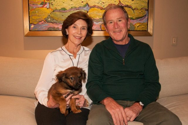 George and Laura Bush Just Adopted a Puppy From Their Local Animal Shelter