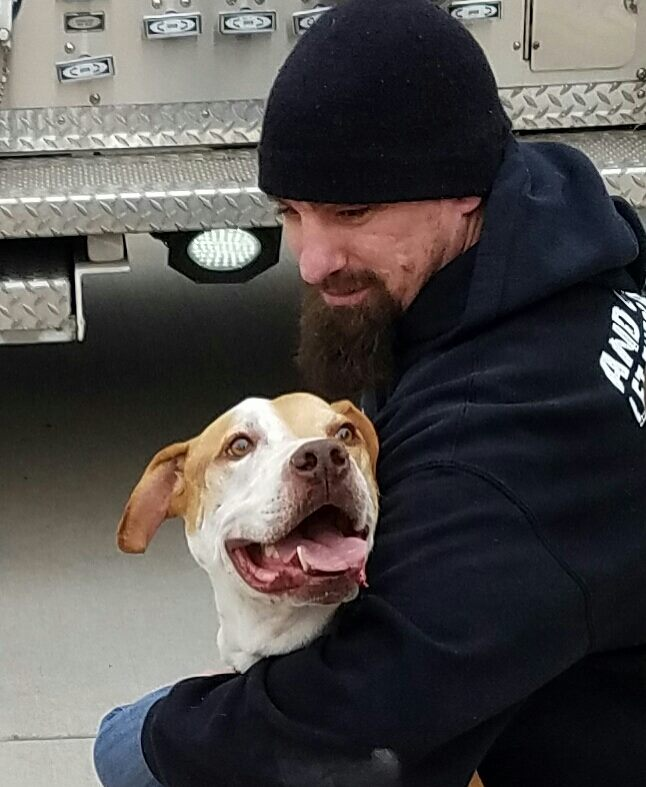 Shelter Treats Cancer-Stricken Homeless Dog To Special Bucket List