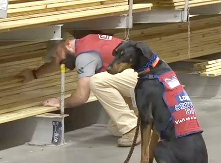 Lowe's Store Hires Veteran with PTSD and His Service Dog