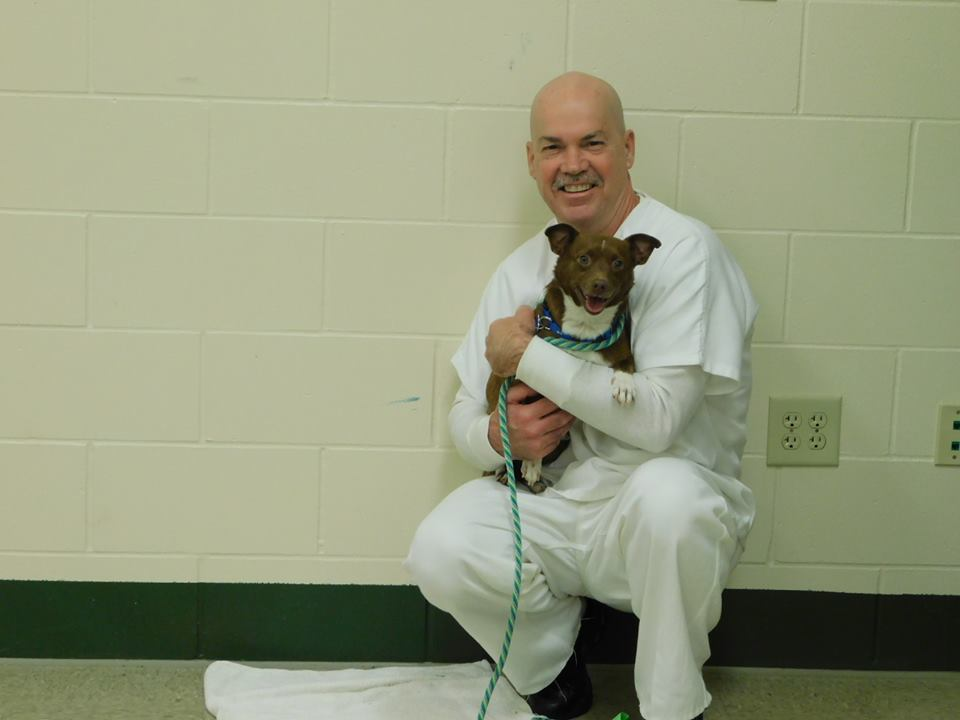 Homeless Dogs, Prison Inmates And Second Chances