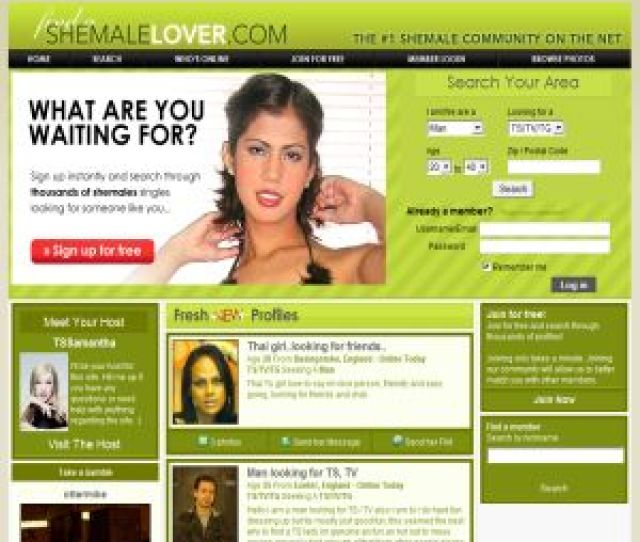 Find A Shemale Lover Image