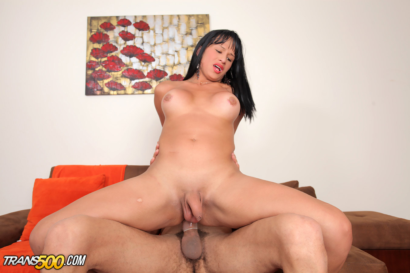 Asian fetish dvd