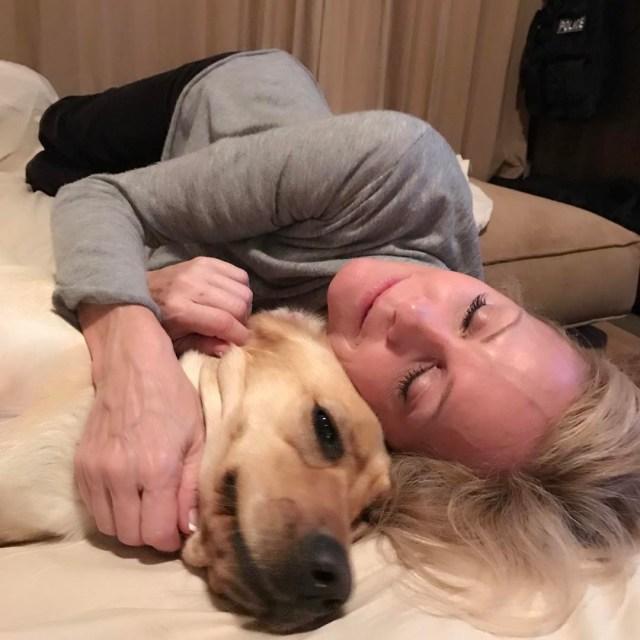 Saturday night snuggles with Sadie lovemylab DogsAreFamilyToo dogsrfamily2 saturdaynight spiritofthewildhellip