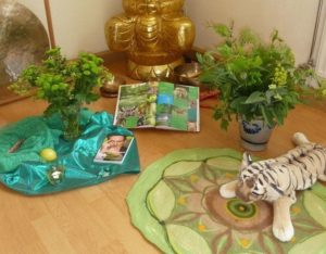 Shiatsu Praktiker-Training Fünf Elemente Holz