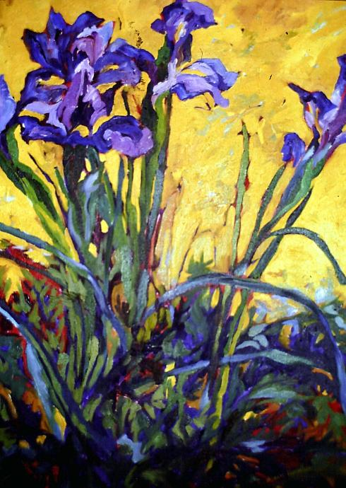 Iris: One of Forty in First Solo Exhibit