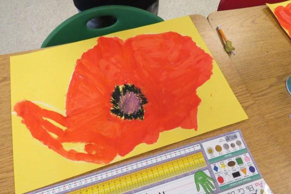 Kath's Canon, November 11, 2015 Grade 3 Poppies, Burnsland, Bush 047