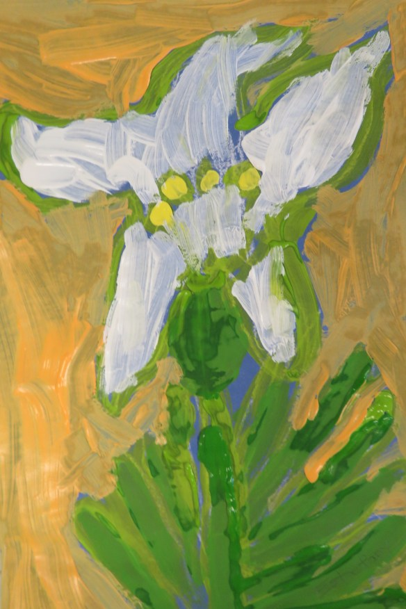 Kath's Canon March 10, 2016 Lilies Grade 3 Isabella 025