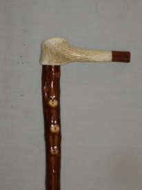 DS w 141 Red deer coronet handle with QLD Blackbeen end cap