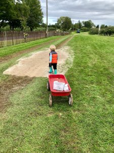 Pulling a Wagon While Apple Picking