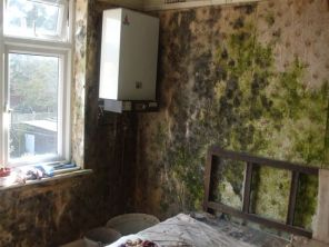 Mould bedroom