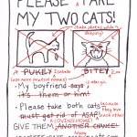 Cat Flier