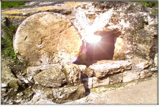 the_empty_tomb