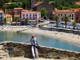 View to the Collioure shore