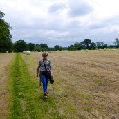 Walking through a mown field