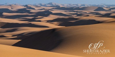 Namib Waves | Sheri Frazier Photography
