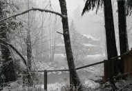 Our neighbor across the river's house was shrouded in white that evening...