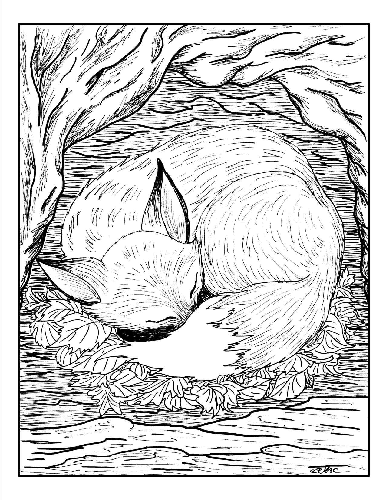 Free Adult Coloring Pages – S.Mac\'s Place to Be