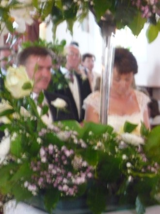 The photo is out of focus but they're FOCUSED!