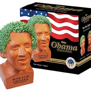 does the chia obama really work
