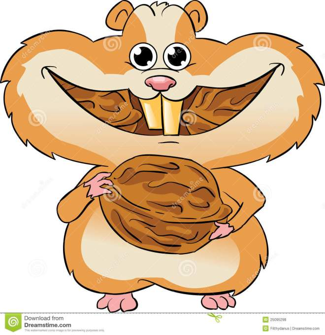 hamster-eating-walnuts-25095298