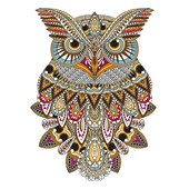 Owl Spirit Guide