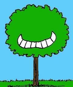 kite-eating tree