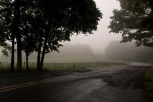 SHERRI BUNYE PHOTOGRAPHY
