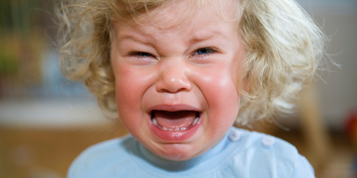 Taming Tantrums in Adopted and Foster Toddlers