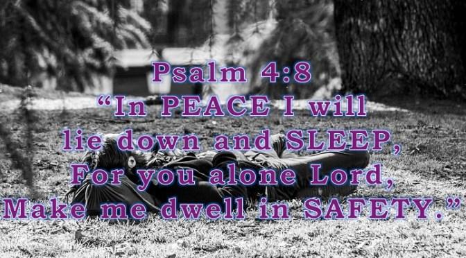 Week # 11 Wisdom Builder Psalm 4:8