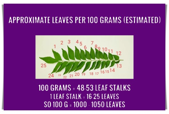 How many curry leaves in 100 grams? Explained