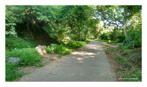 CTM_Gandhi Memorial Climb_IMG_20150908_162604711_HDR